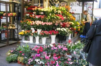 Южный округ входит в тройку лидеров по числу цветочных магазинов в Москве
