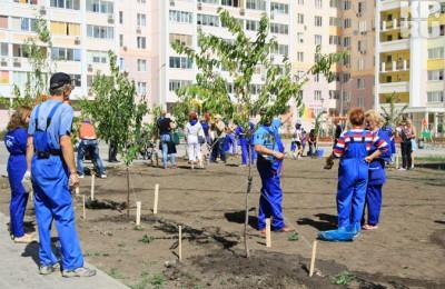 Дворы в районе Чертаново Северное озеленят деревьями, которые выбрали «Активные граждане»