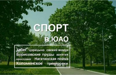 спорт_270516