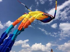 На фестивале воздушных змеев в ЮАО