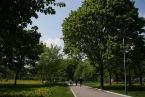 12 июня жителей ЮАО приглашают в парк «Садовники»