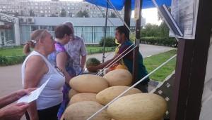Бахчевой развал в районе Чертаново Северное