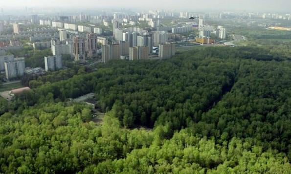 ЕРполучила неменее 3 тыс. предложений поформированию «зеленого пояса»
