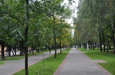Площадка для игры в большой теннис появится в парке района Чертаново Северное