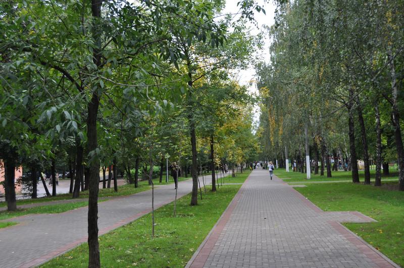 Школьный парк в районе Чертаново Северное