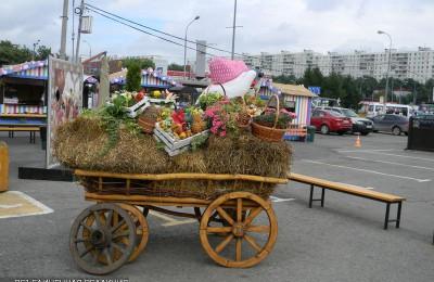 На Ореховом бульваре с 23 сентября по 9 октября будет работать площадка фестиваля «Золотая осень»
