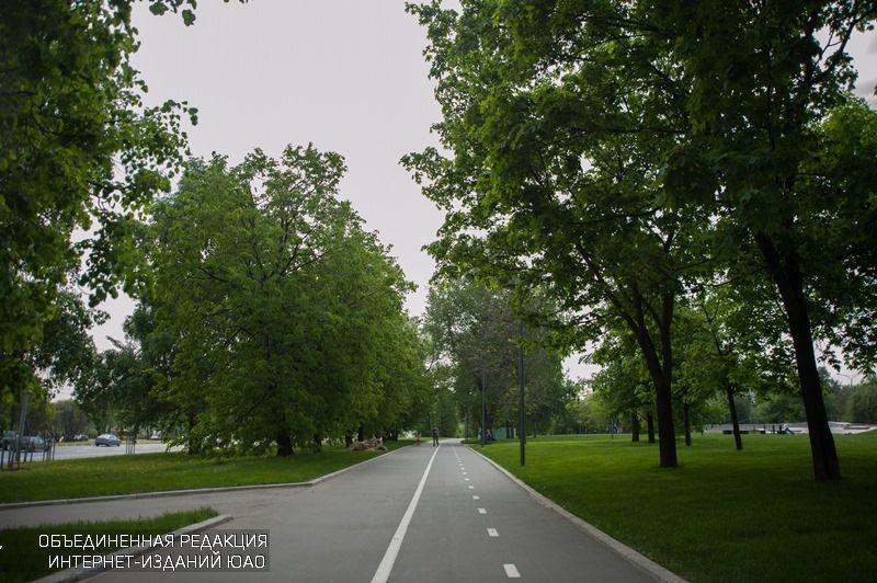 Велосипедная дорожка в одном из парков округа