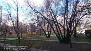 Школьный парк