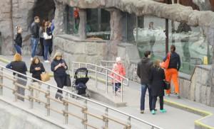 В Московском зоопарке гиды столичных музеев проведут бесплатные экскурсии