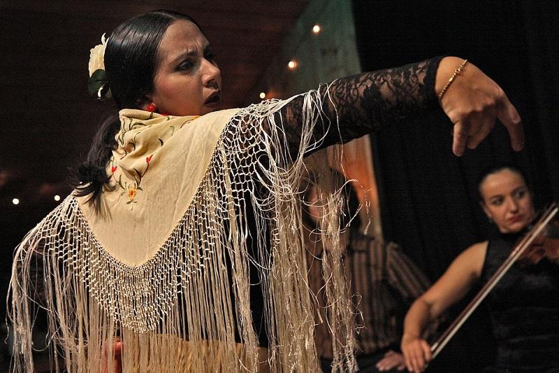 ФЛАМЕНКО фестиваль ¡A bailar! в Чертанове Северном фото pixabay